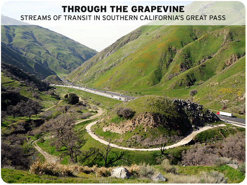 clui: through the grapevine