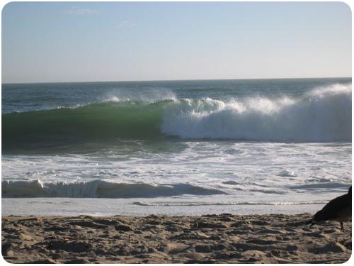 beach day in zuma, california