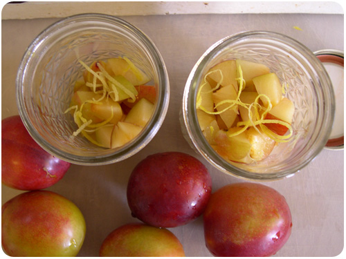 layering chopped plums and lemon zest for freezing