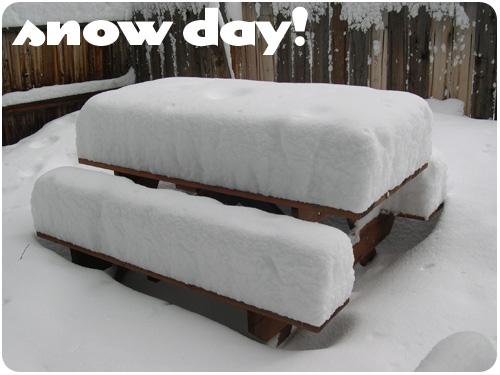 snow day lake tahoe