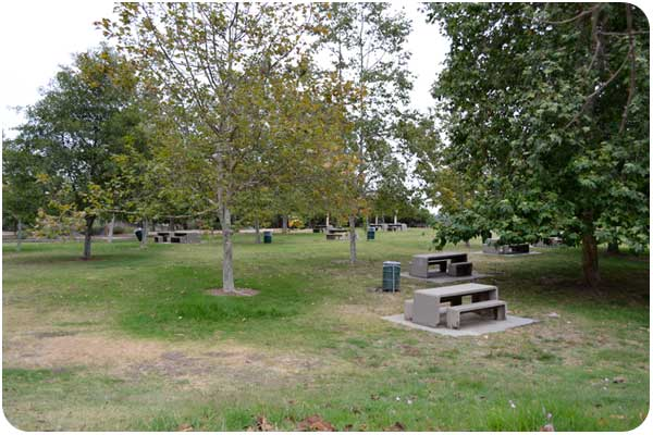 the park at angel's point in elysian park