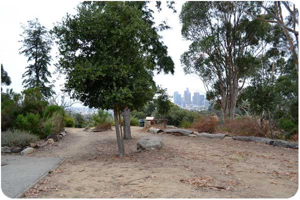 buena vista park in elysian park