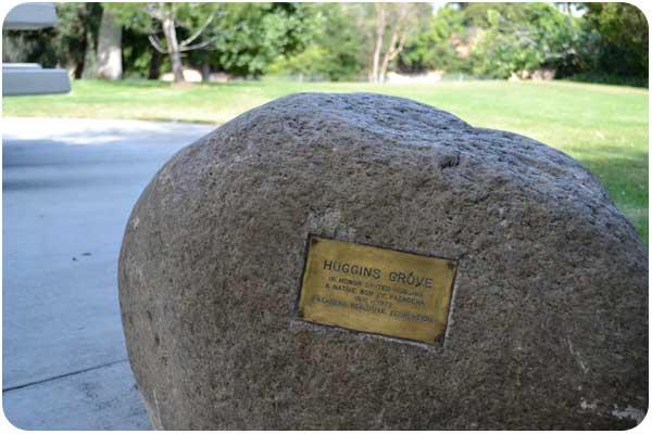 gwinn park huggins grove