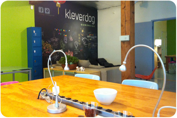 kleverdog co-working