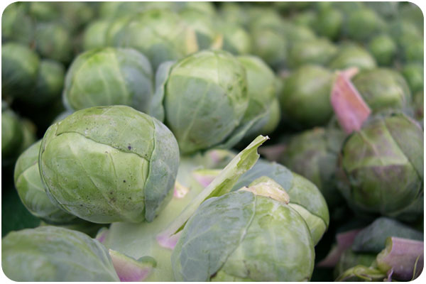 brussels sprouts at the farmer's market