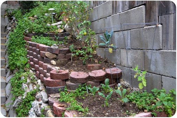 garden spring 2012
