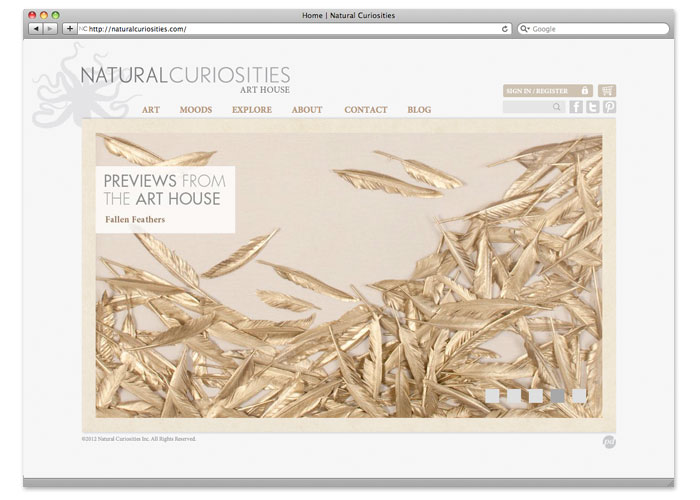natural curiosities home page
