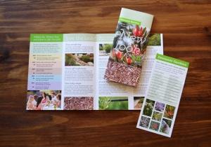 DG_CC_brochure_set