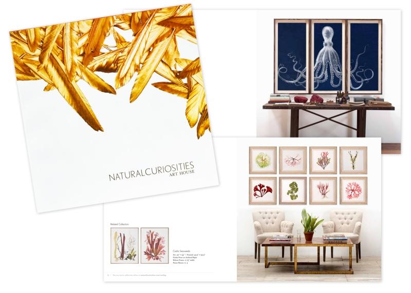 NC_catalog_2014_1272